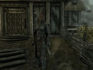 skyrim best wives